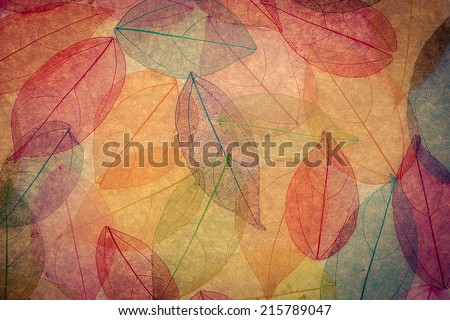 Autumn background. Fall leaves texture - stock photo
