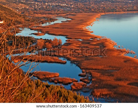 autumn background lake blue water and brown plants - stock photo