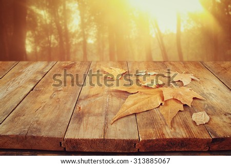 autumn background of fallen leaves over wooden table and forest backgrond with lens flare and sunset - stock photo
