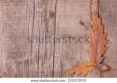 Autumn background of leaves over wooden surface - stock photo