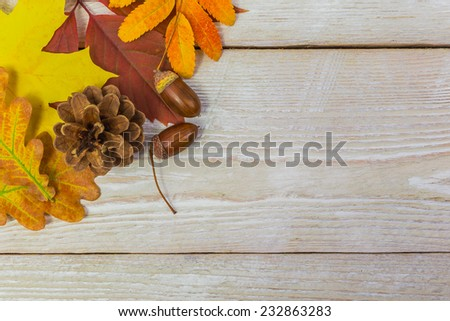Autumn background with color leafs on wooden board - stock photo