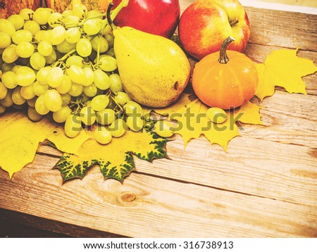 Autumn background with colorful leaves and pumpkins on rustic wooden board. Fall fruit and vegetables on wood. Thanksgiving dinner and Halloween holidays concept. Harvest rural fall season. Copyspace. - stock photo