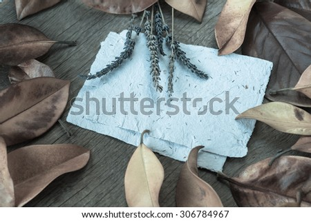 Autumn background with colorfyl yellow orange leaves of magnolia on wooden background. Fall theme, Autumn concept background with yellow fall leaves and copy space - stock photo