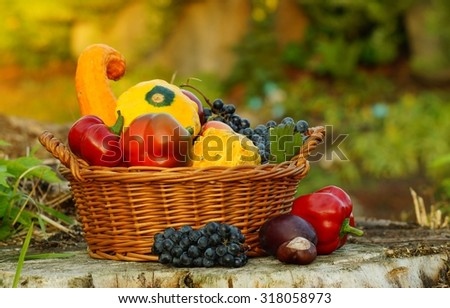 Autumn basket full of fruits and vegetables in the garden, in the light of the setting sun - stock photo