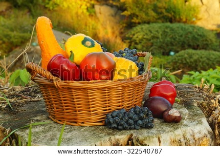 Autumn basket full of pumpkins other vegetables and fruits - stock photo