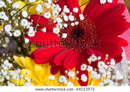 Autumn bouquet of flowers a close up, a background - stock photo