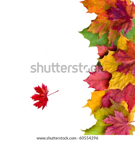 Autumn card of colored leafs - stock photo