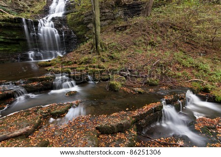 Autumn carpet of leaves at Scaleber Force waterfall, Yorkshire Dales - stock photo