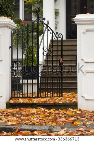 Autumn Carpeting. Autumn leaves carpet the entrance to a private home in London. - stock photo