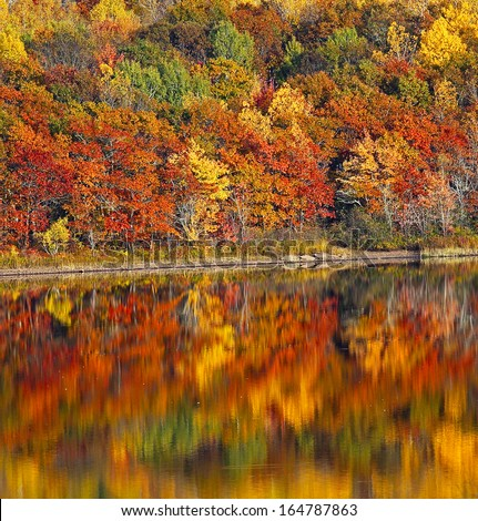 Autumn colors on the Washademoak at Codys, Cambridge-Narrows, Coles Island, Queens County, New Brunswick, Canada. - stock photo