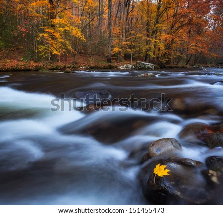 Autumn colors with streaming water, smokey mountains national park - stock photo