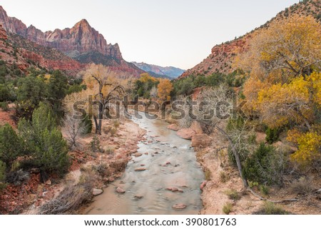 Autumn colours in Zion National Park - stock photo