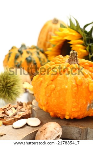 Autumn composition (pumpkins on old wooden board). Thanksgiving day concept - stock photo