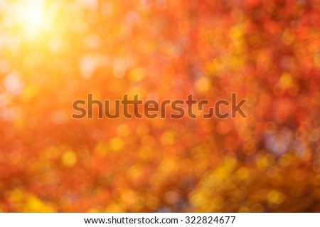 Autumn deep blurred sunny background. - stock photo