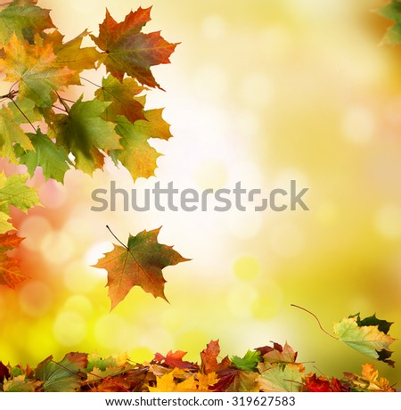 Autumn falling leaves background - stock photo