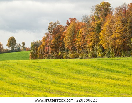 autumn farm field - stock photo