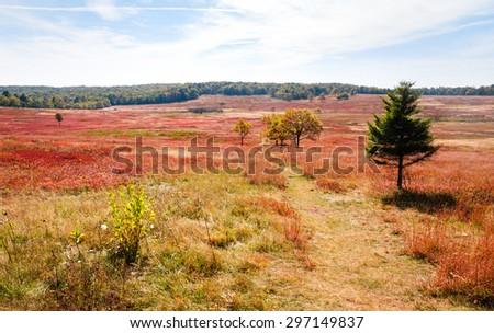Autumn Field Trail at Shenandoah National Park - stock photo