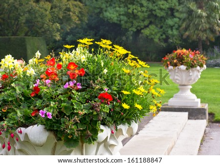 Autumn flowers onthe steps passway in London park. - stock photo