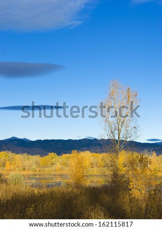 Autumn foliage in a brightly lit early morning wild area with pond on the Colorado prairie - stock photo