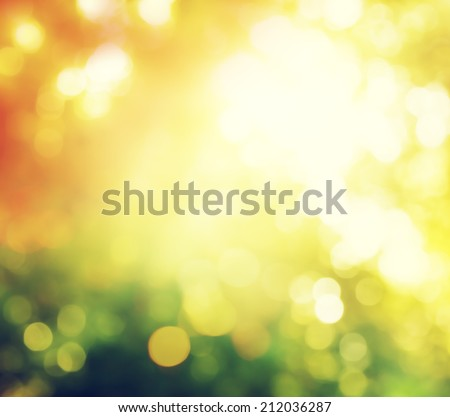 autumn forest bokeh - stock photo
