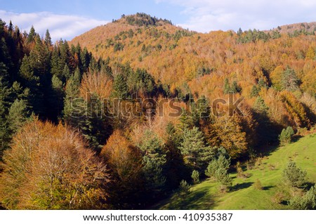 autumn forest Irati and sky with clouds - stock photo