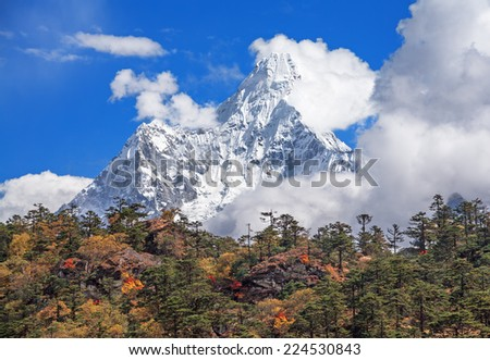 Autumn forest on the background of the sacred Ama Dablam peak (6814 m) in Nepal, Himalayas. Canon 5D MkII. - stock photo