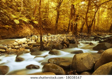 Autumn forest with a mountain river with stream falling into it. - stock photo