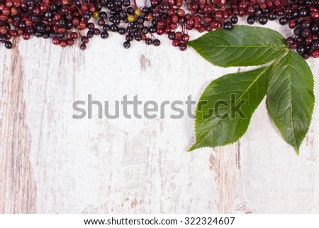 Autumn fresh elderberry with leaf and copy space for text on old rustic wooden background, healthy nutrition, alternative medicine and therapy - stock photo