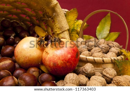 Autumn fruit composition with chestnuts, walnuts and pomegranates - stock photo