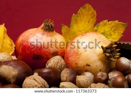 Autumn fruit composition with chestnuts, walnuts hazelnuts, almonds and pomegranates - stock photo