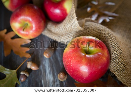 Autumn harvest apples with burlap leaves and acorns - stock photo