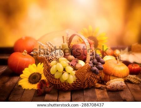 Autumn harvest -  fresh autumn fruits in the basket - stock photo