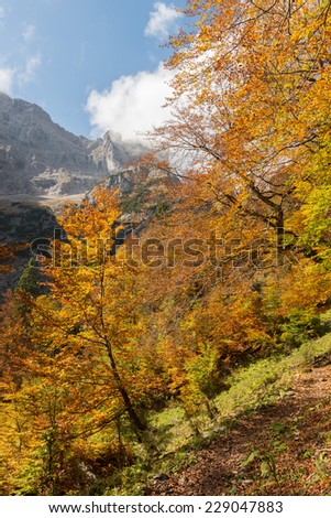 Autumn in Bavarian Alps, Germany - stock photo