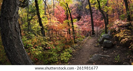 Autumn in Fourth of July Canyon in the Manzano Mountains of New Mexico - stock photo