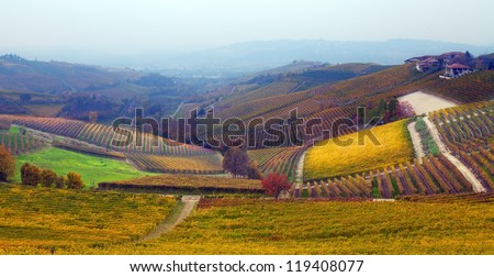 Autumn in Langhe, Italy - stock photo