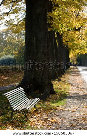 Autumn in Lucca, Italy - stock photo