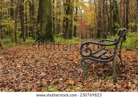 Autumn in Maksimir park - stock photo