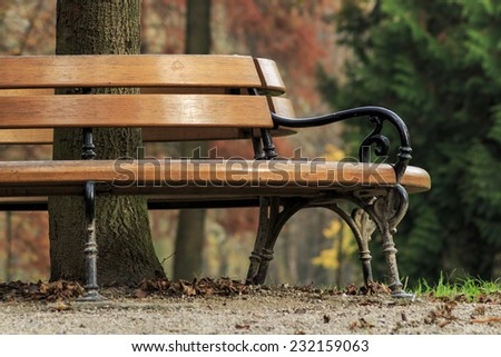 Autumn in Maksimir park, bench around the tree - stock photo
