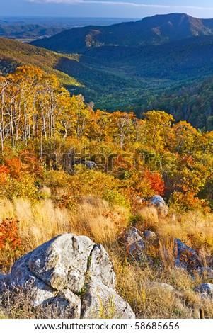 Autumn in Shenandoah National park - stock photo