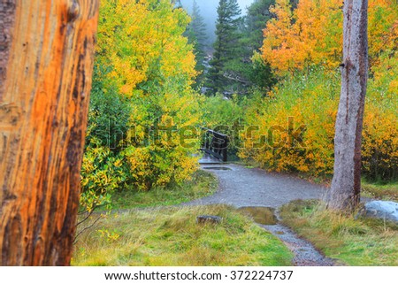 Autumn in Sierra Nevada mountains near Mammoth lakes - stock photo