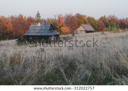 Autumn landscape in a mountain village with old abandoned houses. Carpathians, Ukraine, Europe. Color toning, low contrast - stock photo