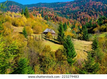 Autumn landscape in Carpathian mountains in Ukraine - stock photo