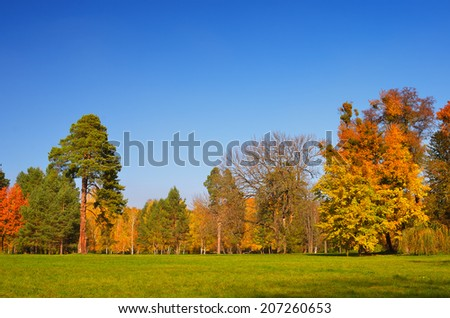 Autumn landscape in the park. Sunny Day - stock photo