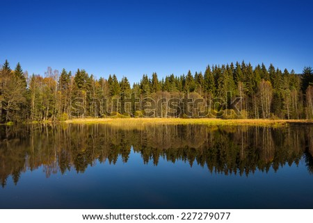 autumn landscape - lake and autumnal forest - stock photo