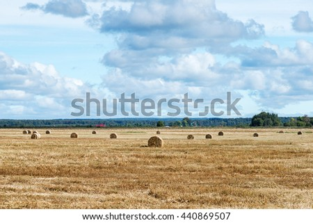 autumn landscape of field with bales of hay