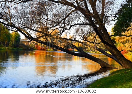 Autumn landscape of lake and bright trees - stock photo