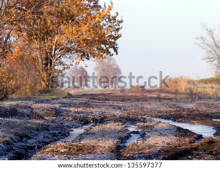 autumn landscape of trees and roads in rural areas - stock photo