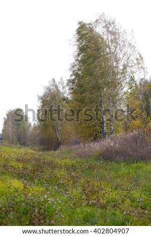 Autumn Landscape. Park in Autumn. Landscape with the autumn forest.Early Autumn - stock photo