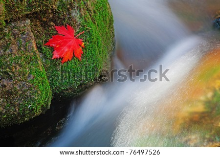 autumn landscape, stormy mountain river - stock photo
