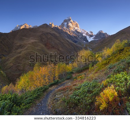 Autumn landscape. The path in the mountains. Birch forest on the slope. View of Mount Ushba. Sunny morning. Main Caucasian ridge. Zemo Svaneti, Georgia  - stock photo
